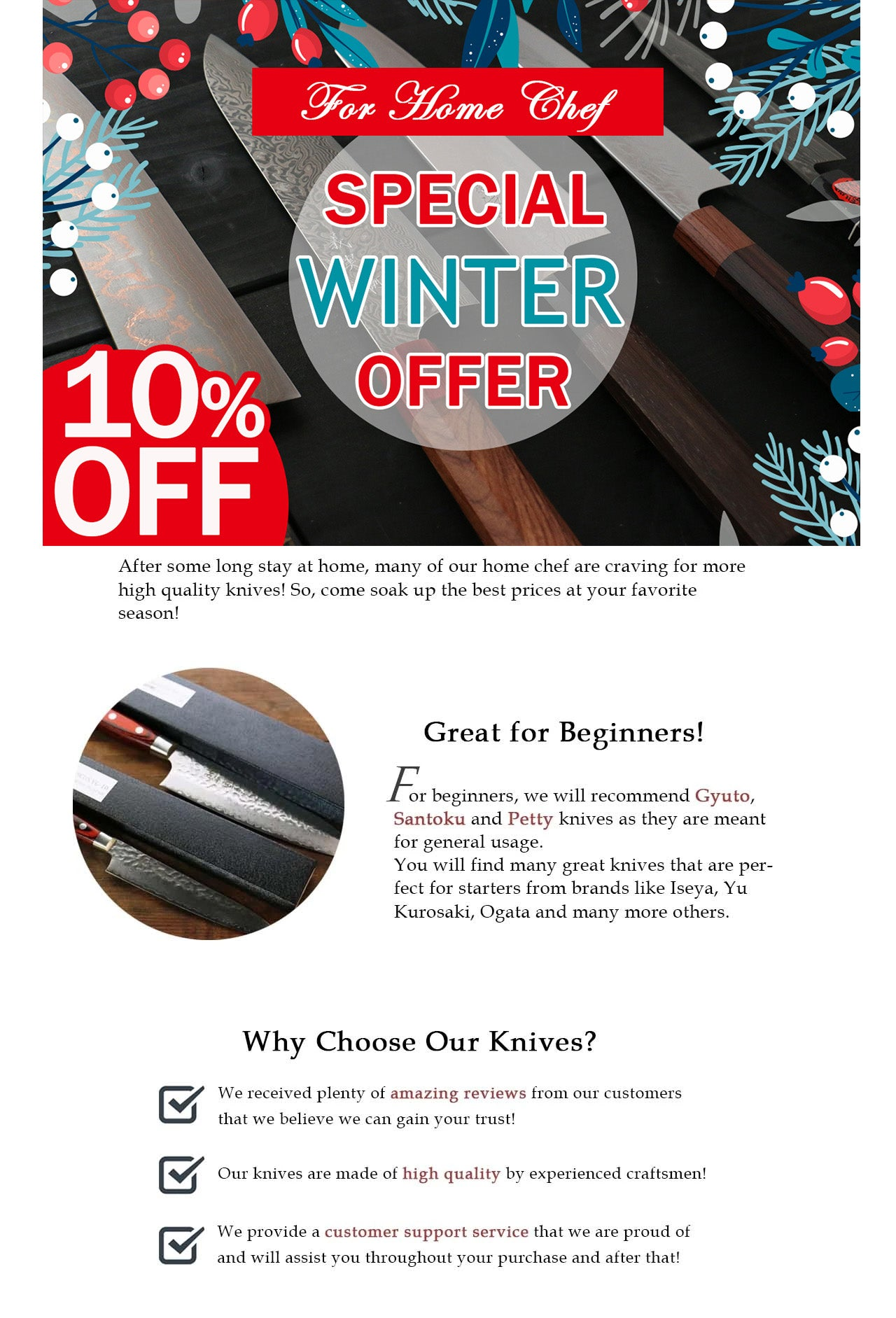 Best Japanese Knives for Winter