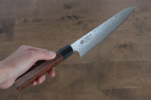 Katsushige Anryu 3 Layer Cladding Blue Super Core Hammerd Japanese Chef's Sujihiki-Slicer Knife 300mm