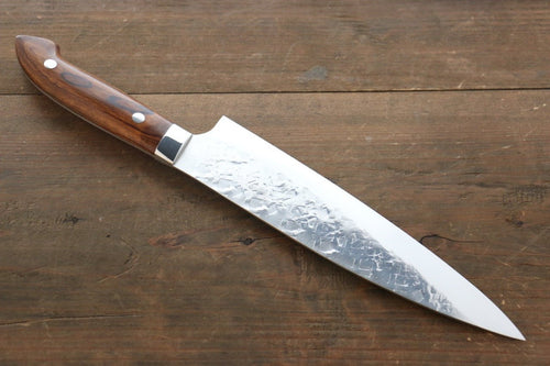 Takeshi Saji SRS13 Hammered Gyuto Japanese Chef Knife 210mm with Iron Wood Handle - Japanny - Best Japanese Knife