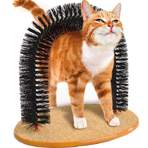 Cat Massage Arch Brush