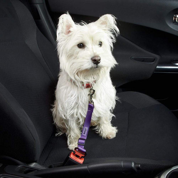 Dog - Cat Safety Travel Seat Belt Restraint Harness Clip For Car Van Lead