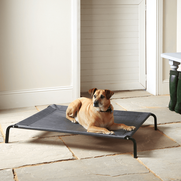 Raised Dog Bed, Elevated, Waterproof Outdoor - Bunty
