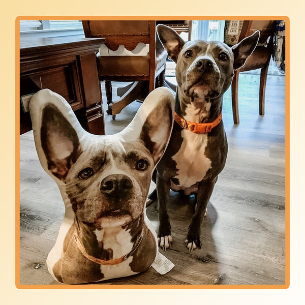 Fast & Furious Nissan Skyline Toy Car-Inspiring Wave