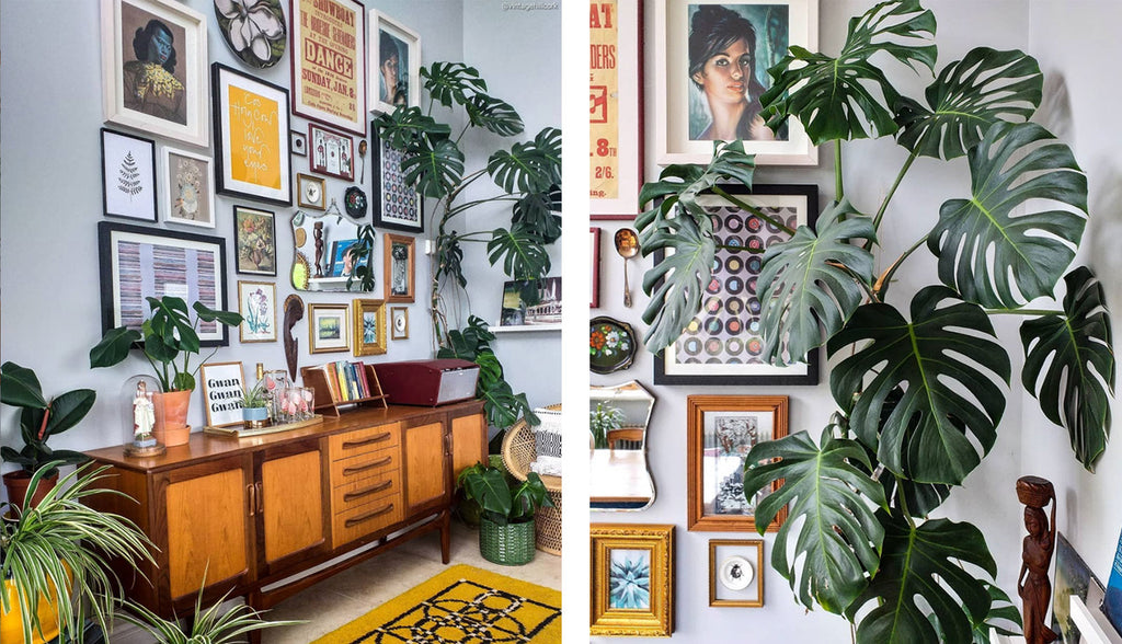 Inkabilly Blog House Tour: Aisling's Eclectic Shack - teak sideboard and gallery wall with monstera plant