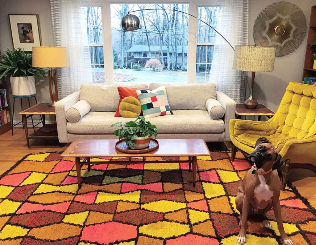 House Tour: Anna's Colourful Mid Century Modern Pad with dog