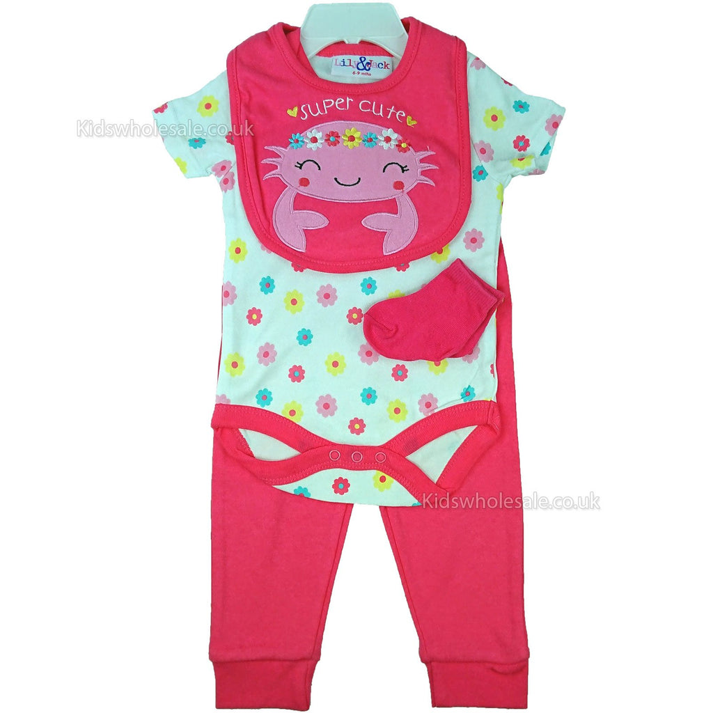 Baby Girls 4pc Set - Super Cute - 0-9M (M14789)