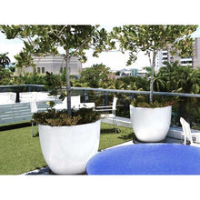 Load image into Gallery viewer, Waterford Round Containers - Indoor / Outdoor Planters