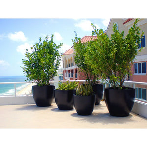 Waterford Round Containers - Indoor / Outdoor Planters