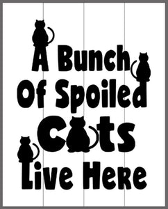 A bunch of spoiled cats live here 14x17
