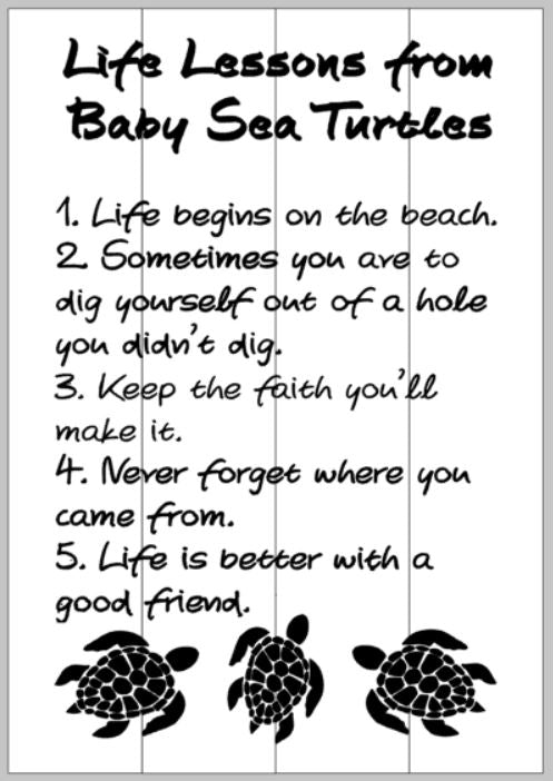 life lessons from a baby turtle 14x20