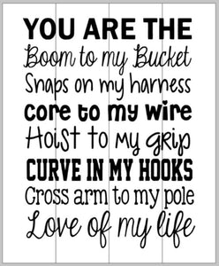 You are the boom to my bucket (linesman) 14x17