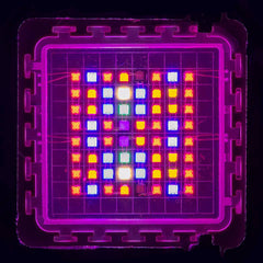 COB LED Grow Light Chip