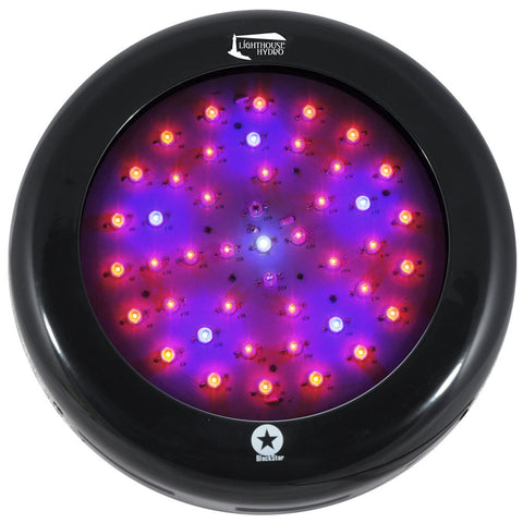 LED Head Grow Lights Official LightHouse Hydro Image - Lighthouse Hydro - BlackStar 135 watt UV UFO - UFO - 1