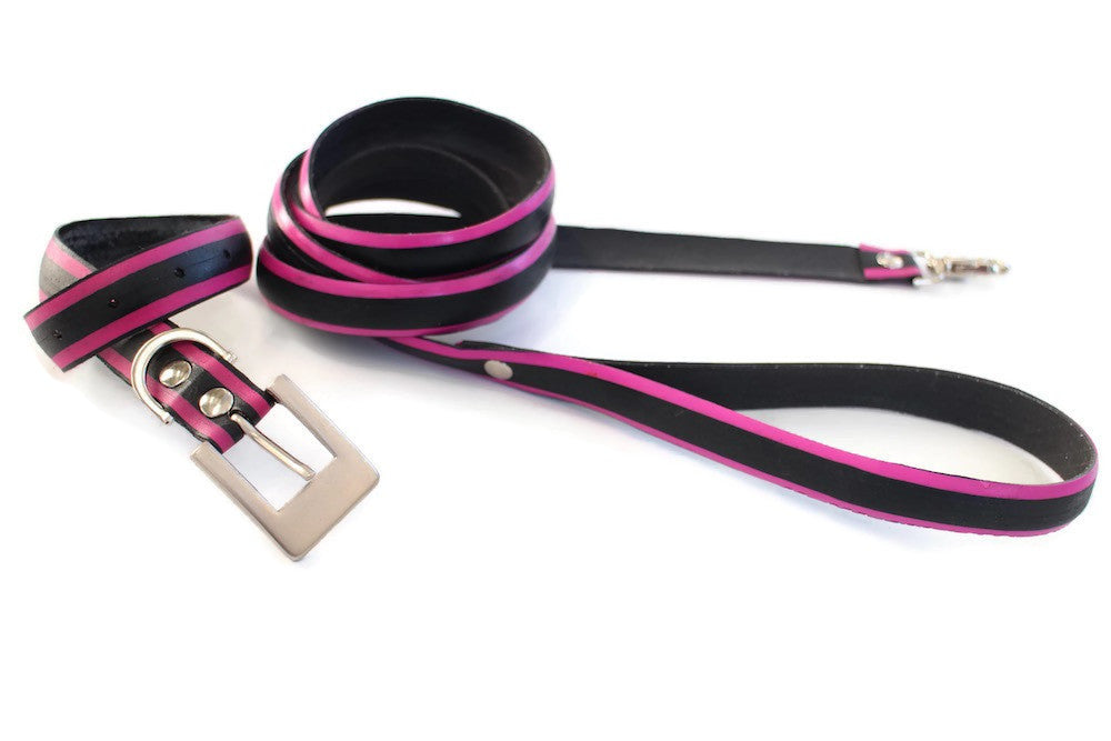 Pet Collar & Leash Set