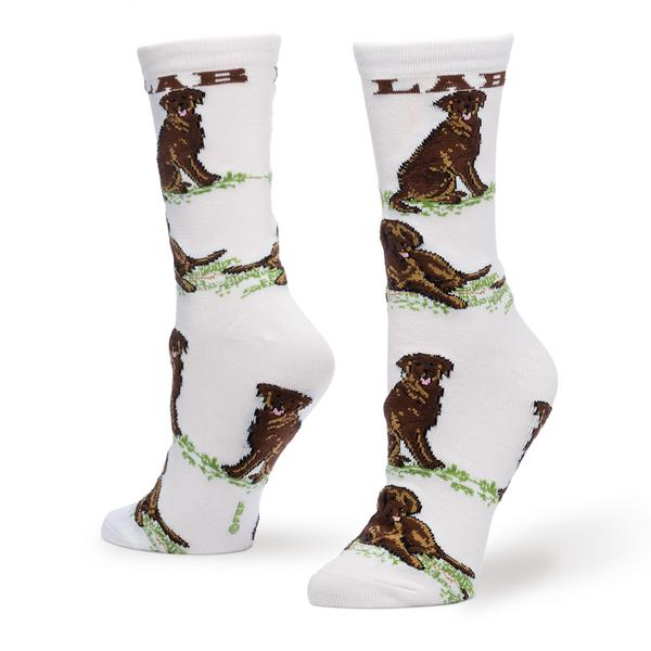 Chocolate Lab Socks - One Size - Novelty Socks, Mens, Womens, Kids