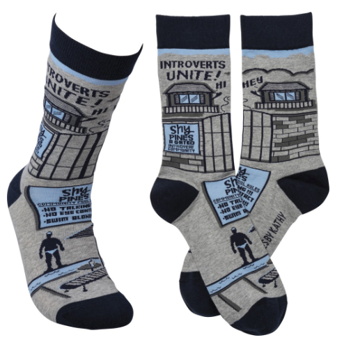 """Introverts Unite"" Socks - One Size - Novelty Socks, Mens, Womens, Kids"