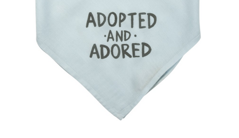 Gift-Dog Bandana Adopted!