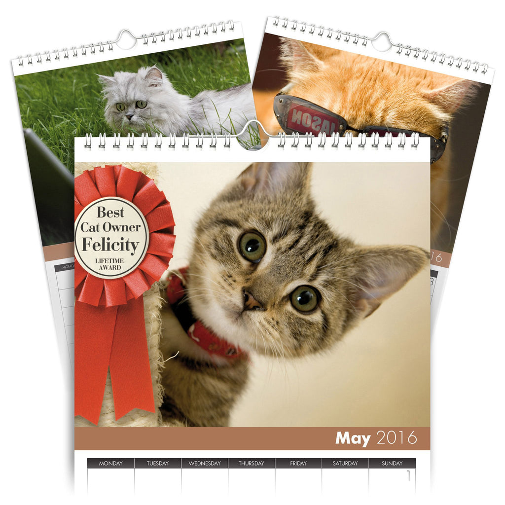 Cats Personalised A4 Calendar