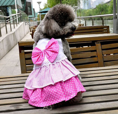 Pet cute dress layered cake skirt