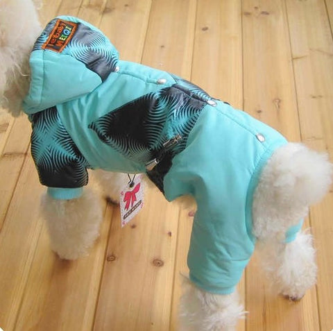 Siamese SKY BLUE Windbreaker Style Jacket for Pet & Dog Clothing