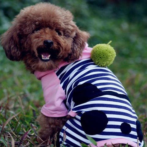 Pet & Dog's Clothing Apparel Accessories Panda Coat Jacket