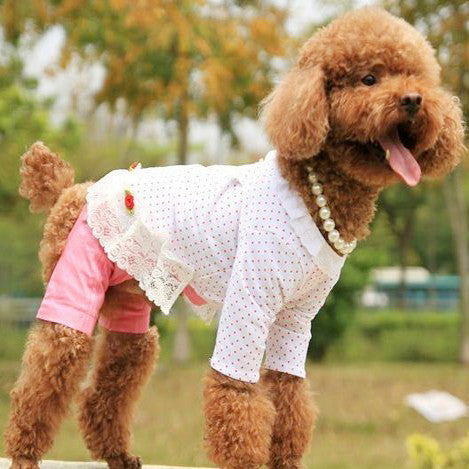 Three Flower Cotton Shirt for Cute Dog's & Adorable Pet's Fashion Clothing