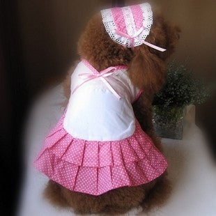 Online Shop Dog Costumes Cleaning Maid Skirt Dress for Supply Pet Fashion