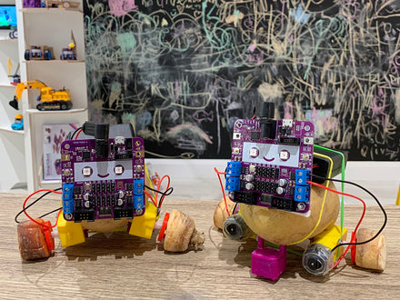 A week of Fun and Creative Robot Workshops