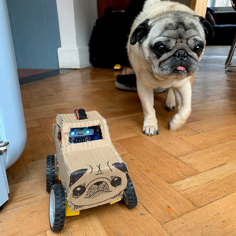 Photo of a cardboard monster truck that looks like a pug and a pug that looks like the monster truck