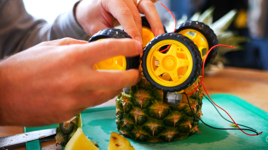 A yellow plastic wheel is attached to a motor on the pineapple. Three other wheels have already been attached.