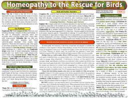 Homeopathy to the Rescue for Birds