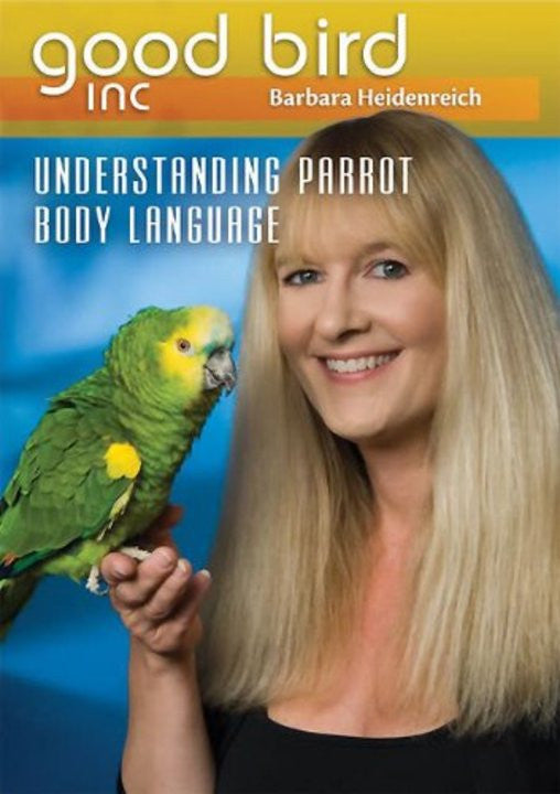 Understanding Parrot Body Language