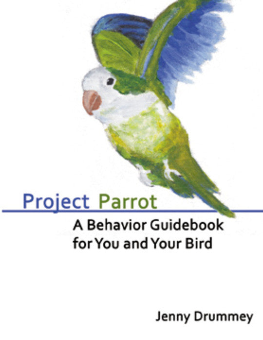 Project Parrot by Jenny Drummey