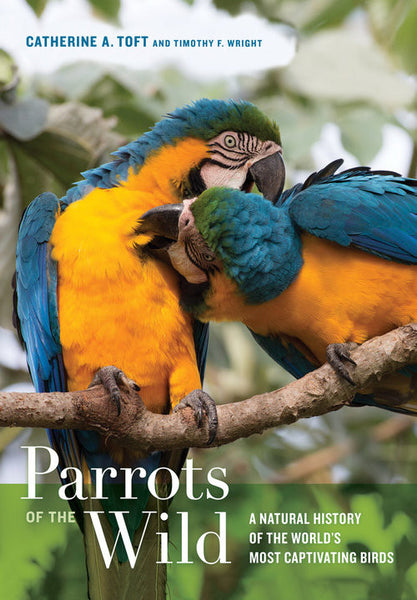 Parrots of the Wild (Toft, Wright)