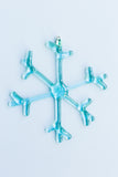 Arctic Ornaments- Set of 6