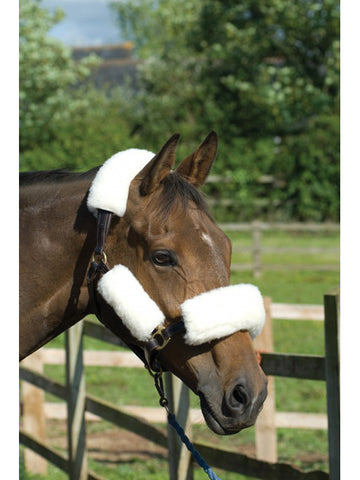 Griffin Wool Headcollar Set