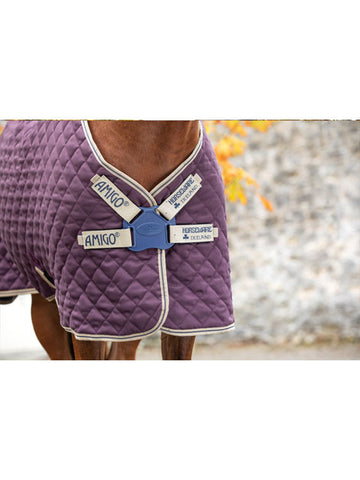 Amigo Stable Plus Medium Weight Disc Front
