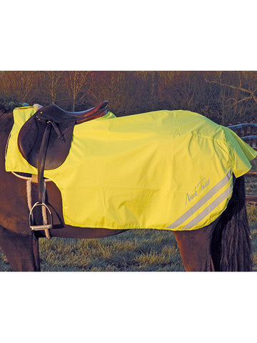 Mark Todd Reflective Waterproof Exercise Rug