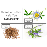 3 Herbs To Help You Fall Asleep
