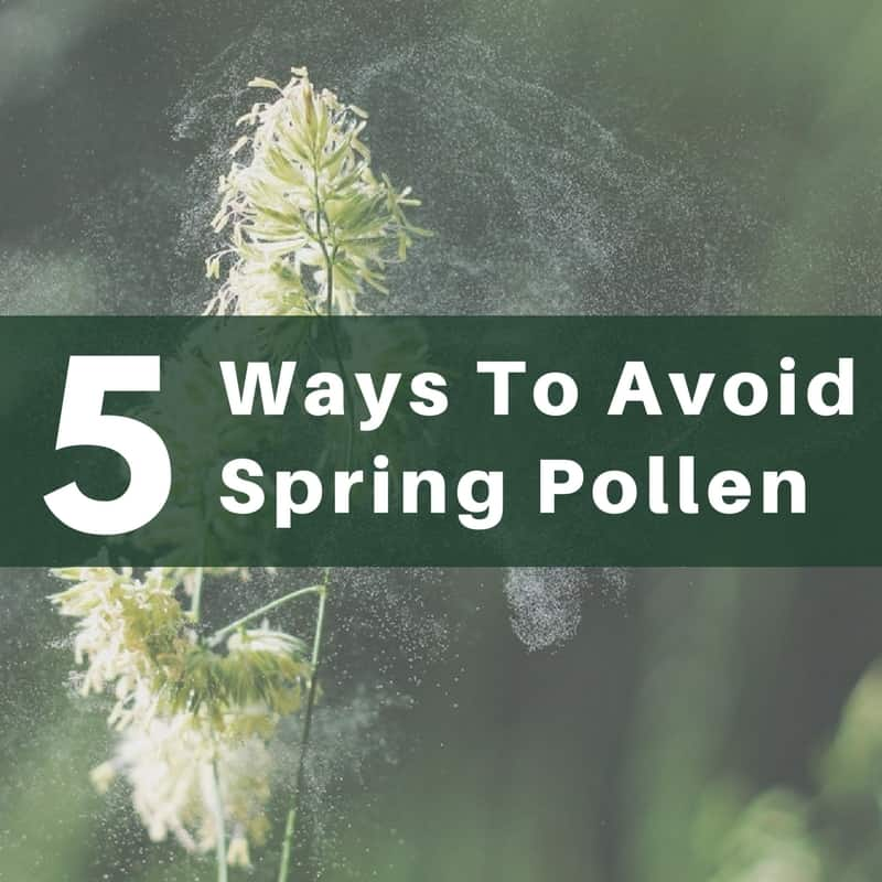 How To Avoid Pollen During Spring