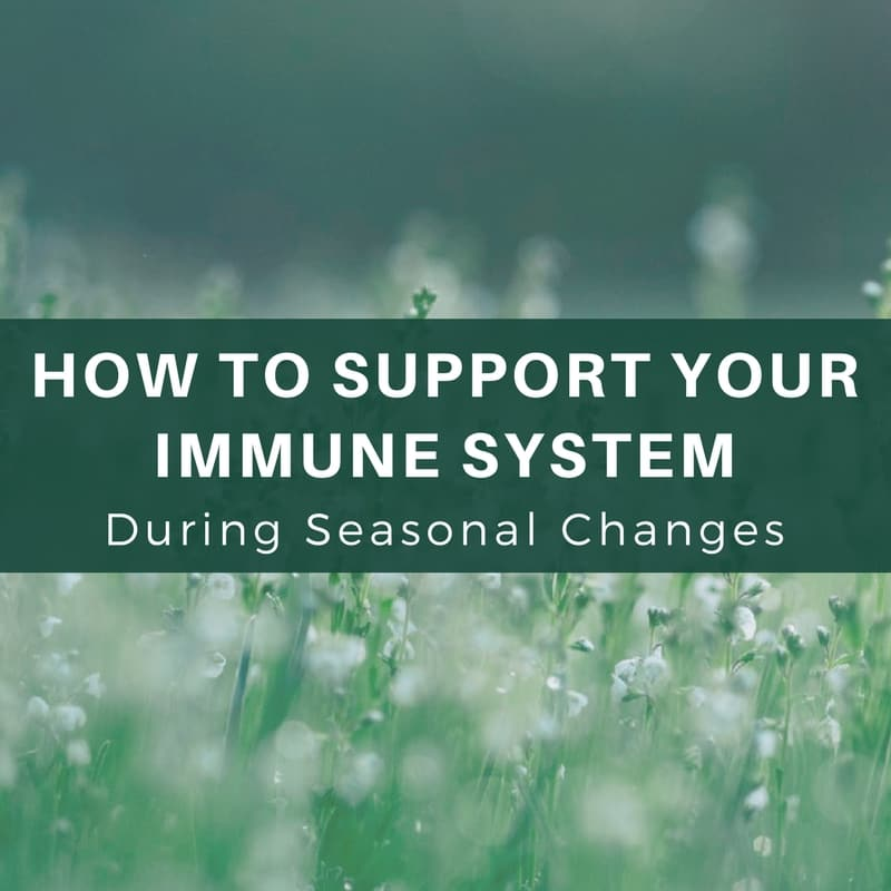 How To Support Your Immune System During Pollen Season