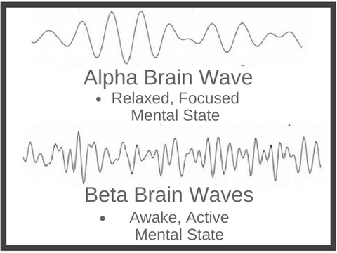Alpha Brain Wave Versus Beta Brain Wave