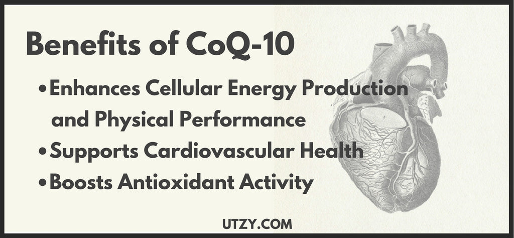 The Benefits of CoQ-10
