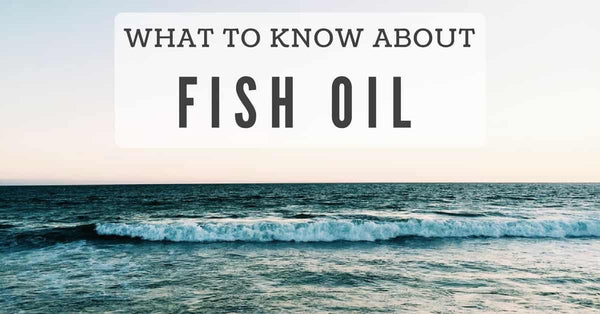The best form of fish oil healthy body healthy lifestyle for What is the best fish oil to take