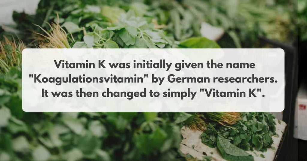 origin behind the name vitamin K