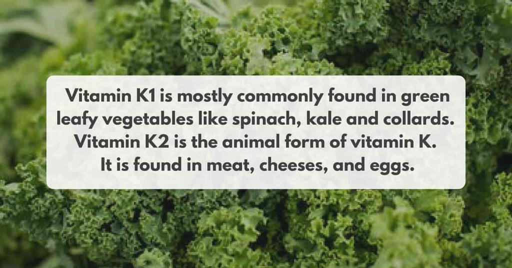 difference between vitamin k1 and vitamin k2