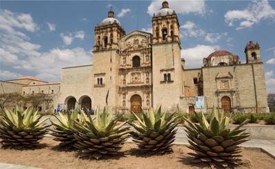 Insider's Look to Oaxaca City