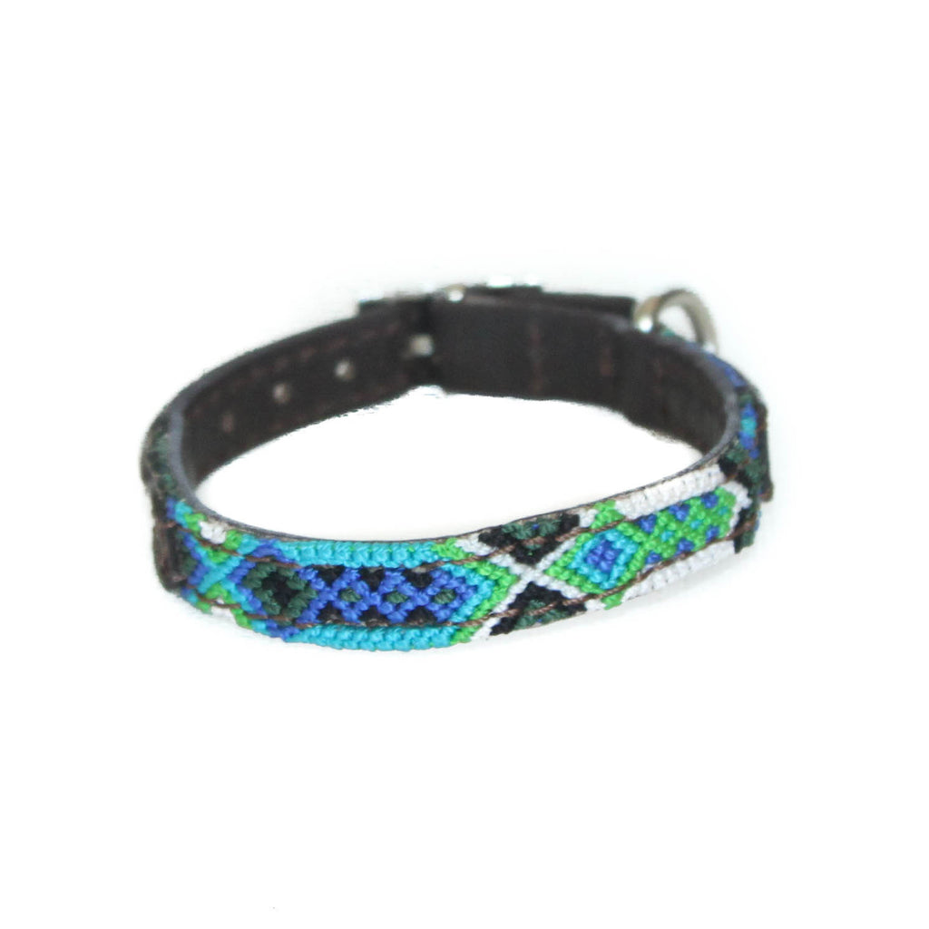 Seattle Blue Dog Collar