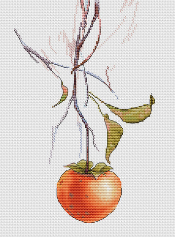 free cross stitch patterns -  A Persimmon - www.crossstitchclub.com