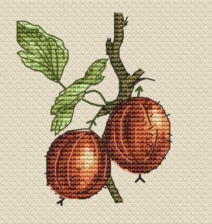 free cross stitch patterns -  A Gooseberry - www.crossstitchclub.com - 1